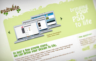 Usability Review: psdtolife.com