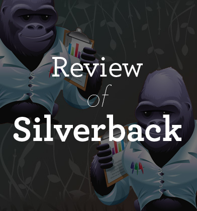 The UX Booth Reviews Silverback