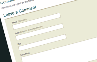 The standard comment form consists of 3 or 4 inputs.
